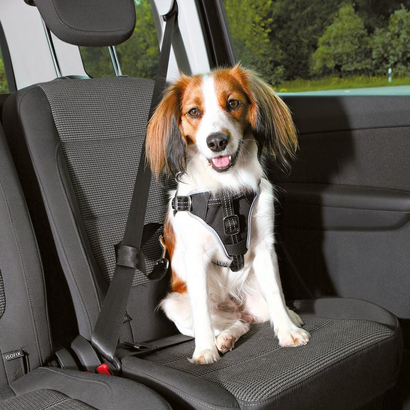 Trixie Auto Sicherheitsgeschirr Hund Dog Protect 12855, Bild 2