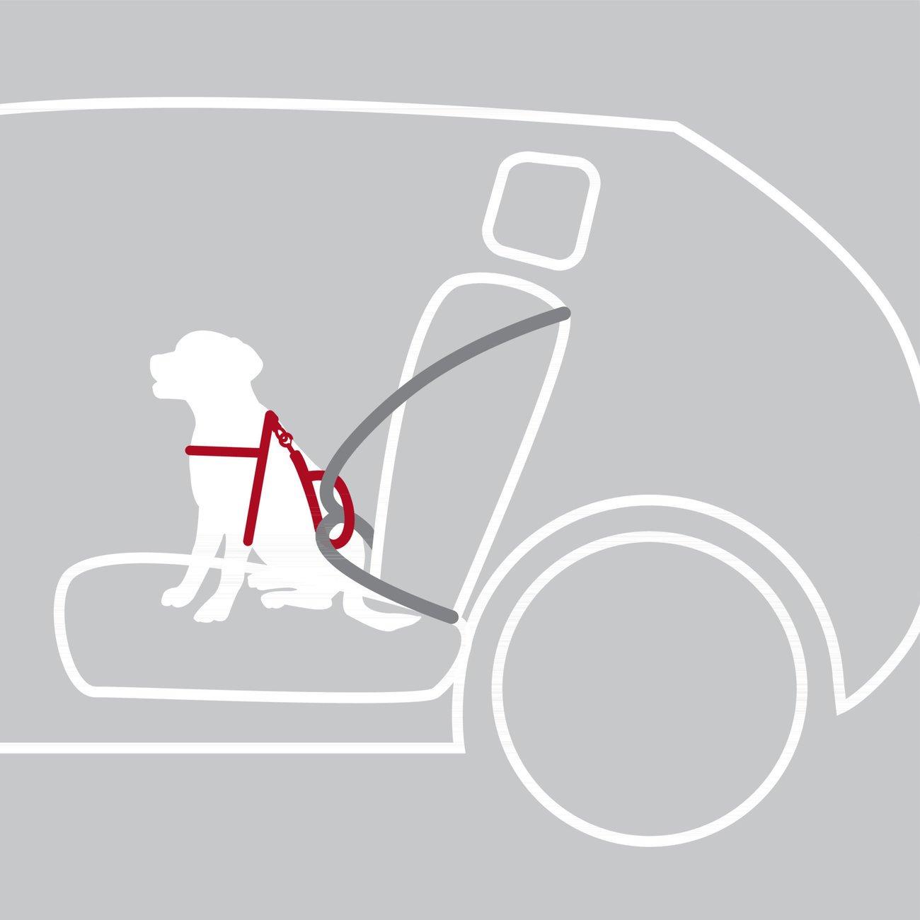 TRIXIE Auto Sicherheitsgeschirr Hund Dog Protect 12855, Bild 5