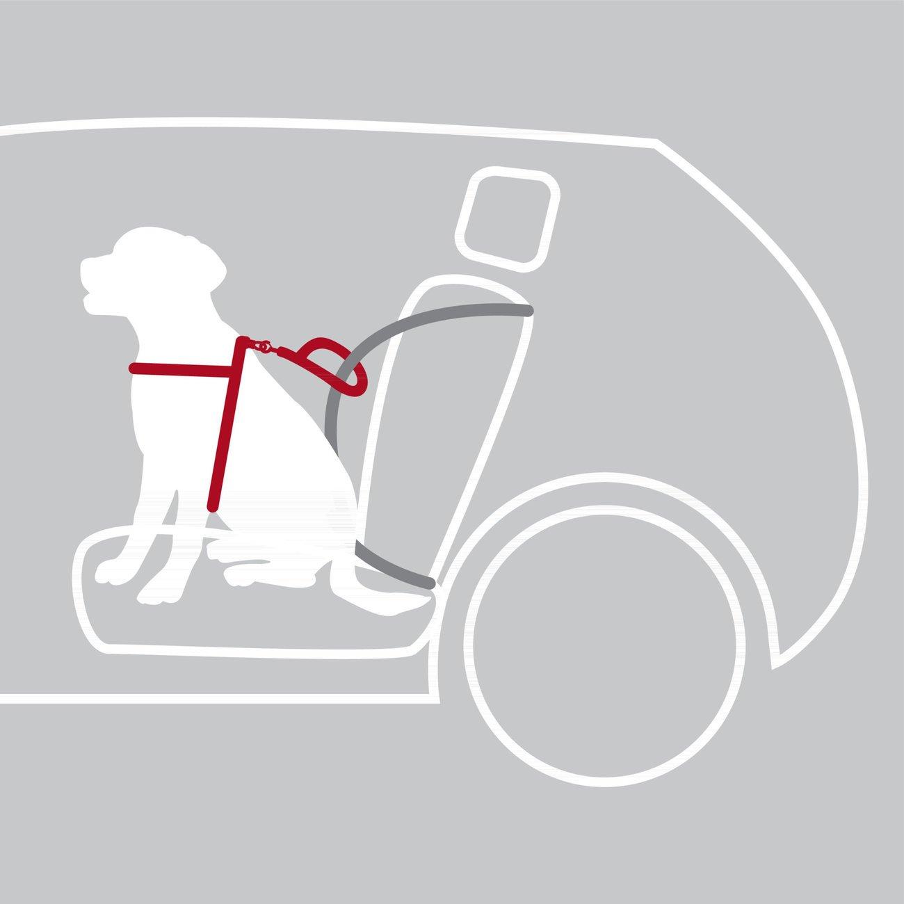 TRIXIE Auto Sicherheitsgeschirr Hund Dog Protect 12855, Bild 6