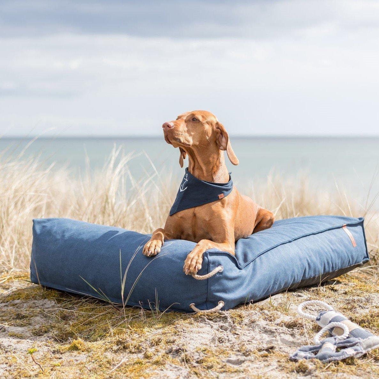 Be Nordic Hunde Halstuch Bild 4
