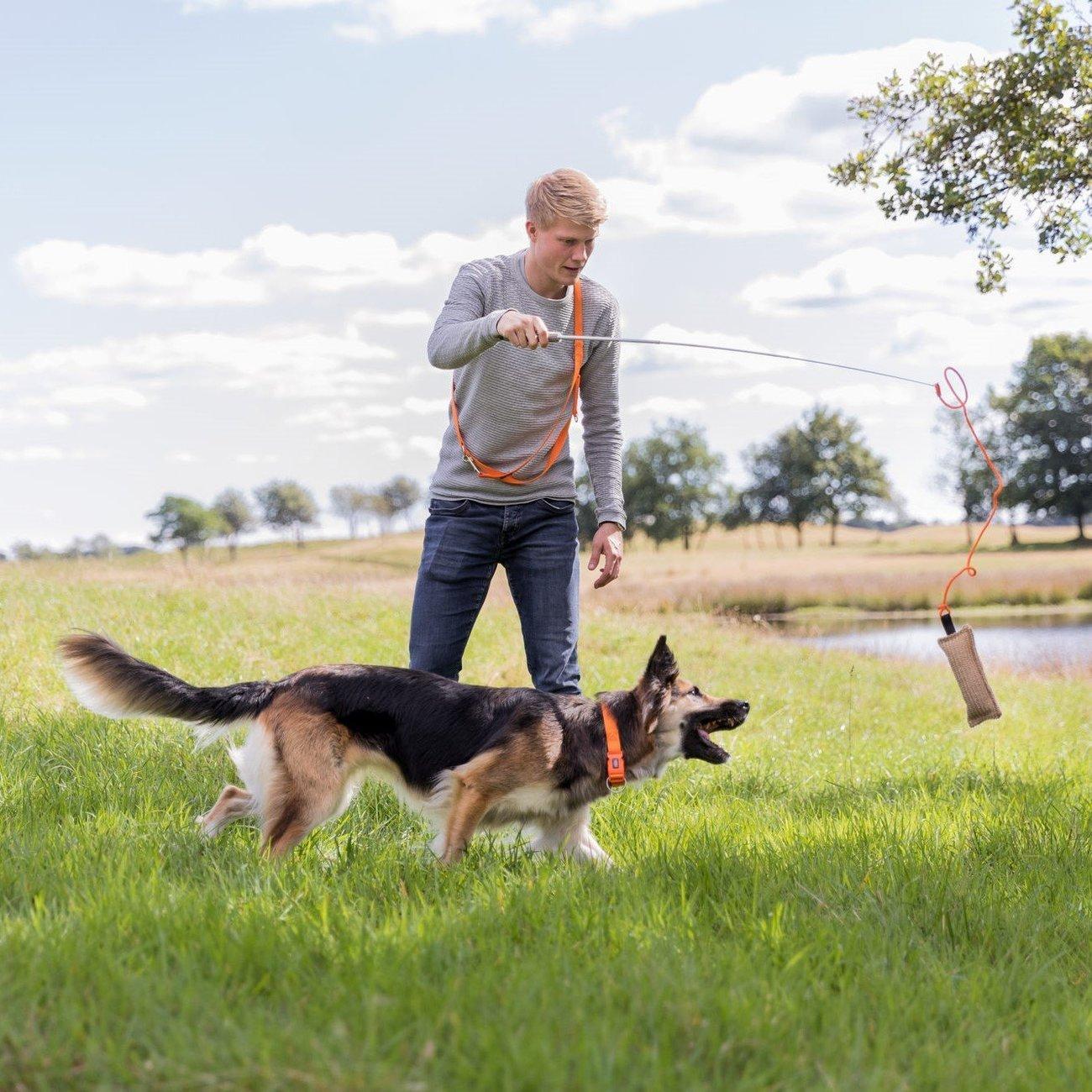 TRIXIE Dog Activity Reizangel für Hunde 32145, Bild 5