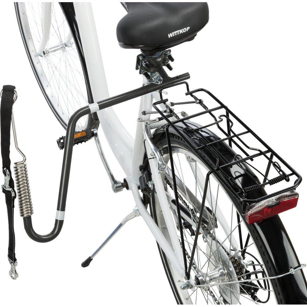 Fahrrad Set mit Leine Bild 3
