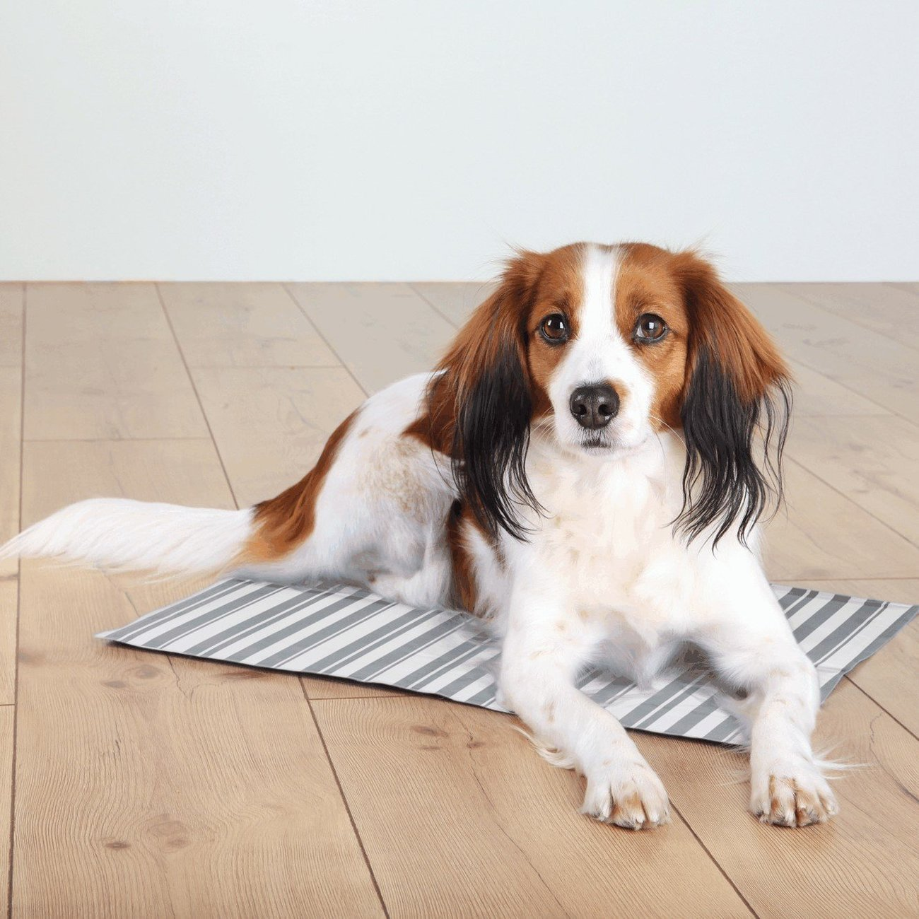 TRIXIE Hunde Kühlmatte Stripes 28773, Bild 2