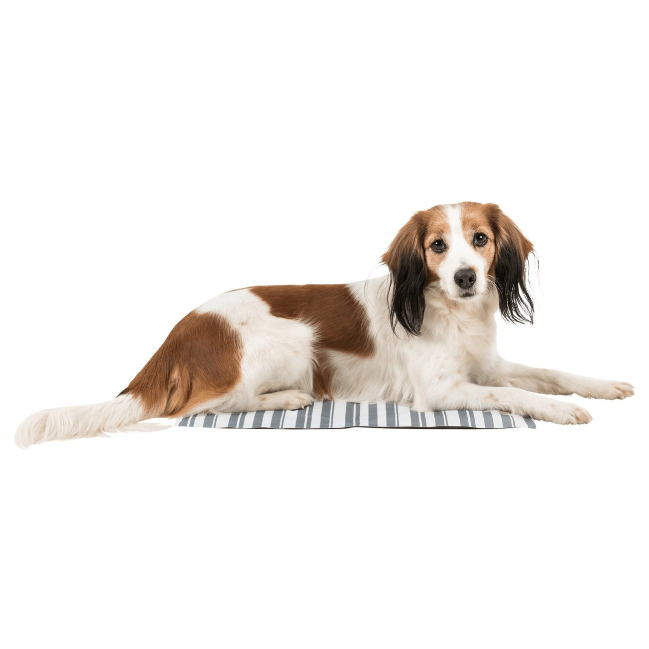 TRIXIE Hunde Kühlmatte Stripes 28773, Bild 8