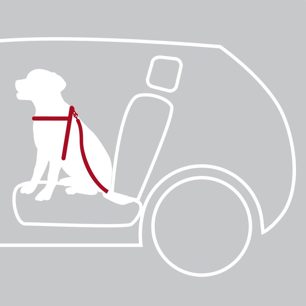 TRIXIE Hunde Sicherheitsgurt Sicherheitsgeschirr für das Auto 1288, Bild 10