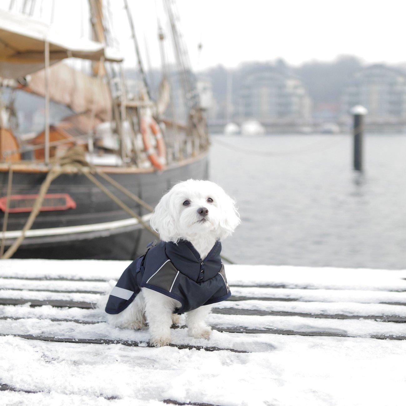 TRIXIE Hunde Wintermantel Rimont 67442, Bild 2