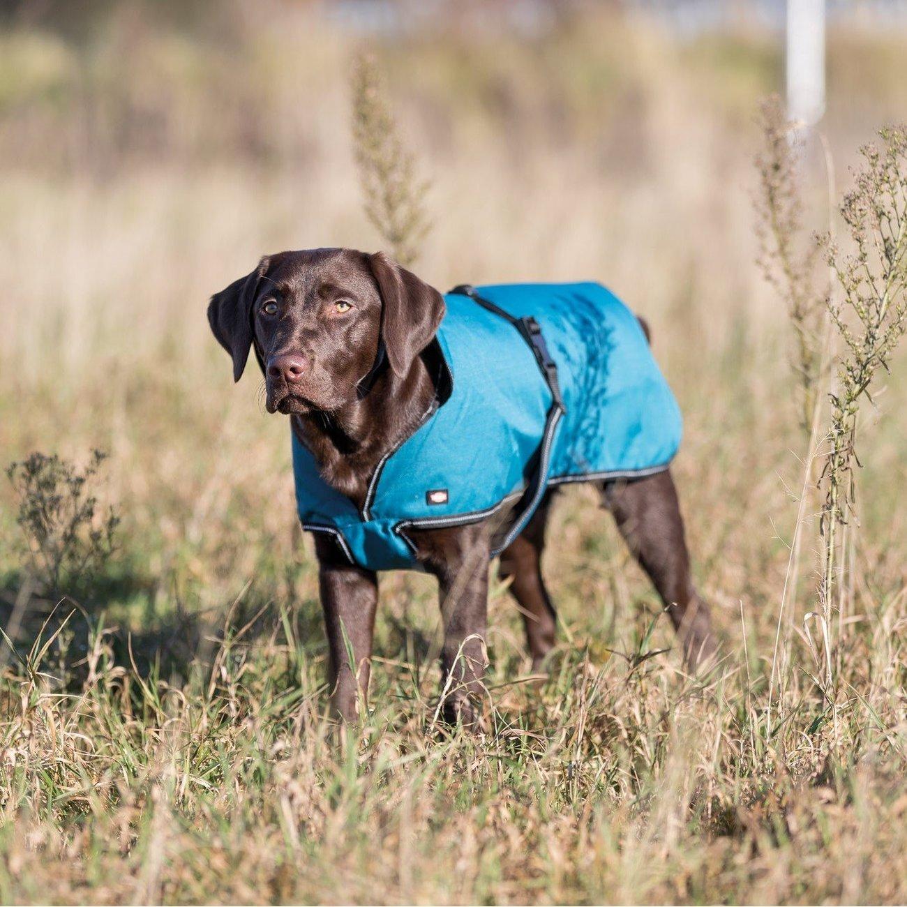 TRIXIE Hundemantel Bréval 67460, Bild 2