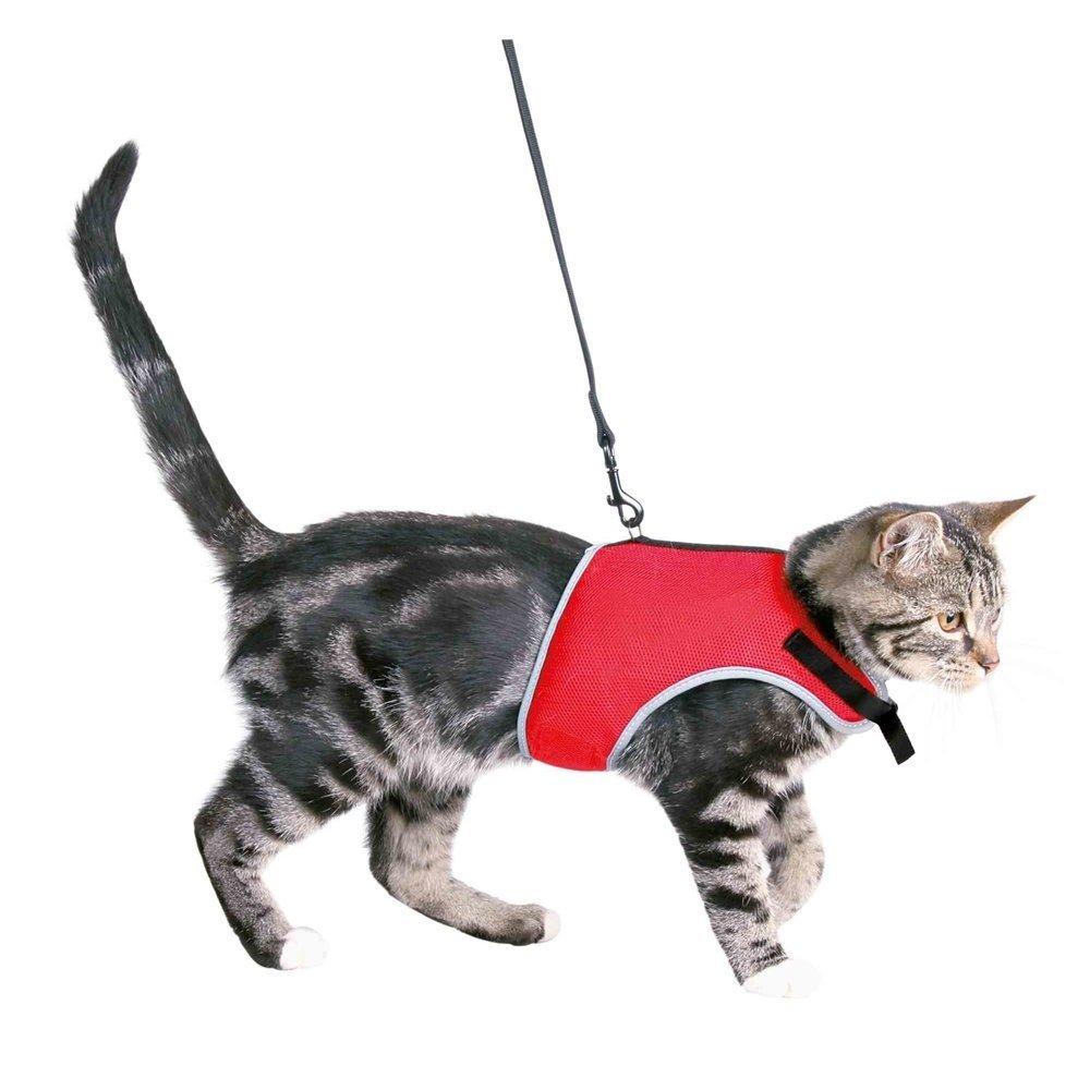 Trixie Katzengeschirr mit Leine, Bauch: 24-42 cm, div. Farben