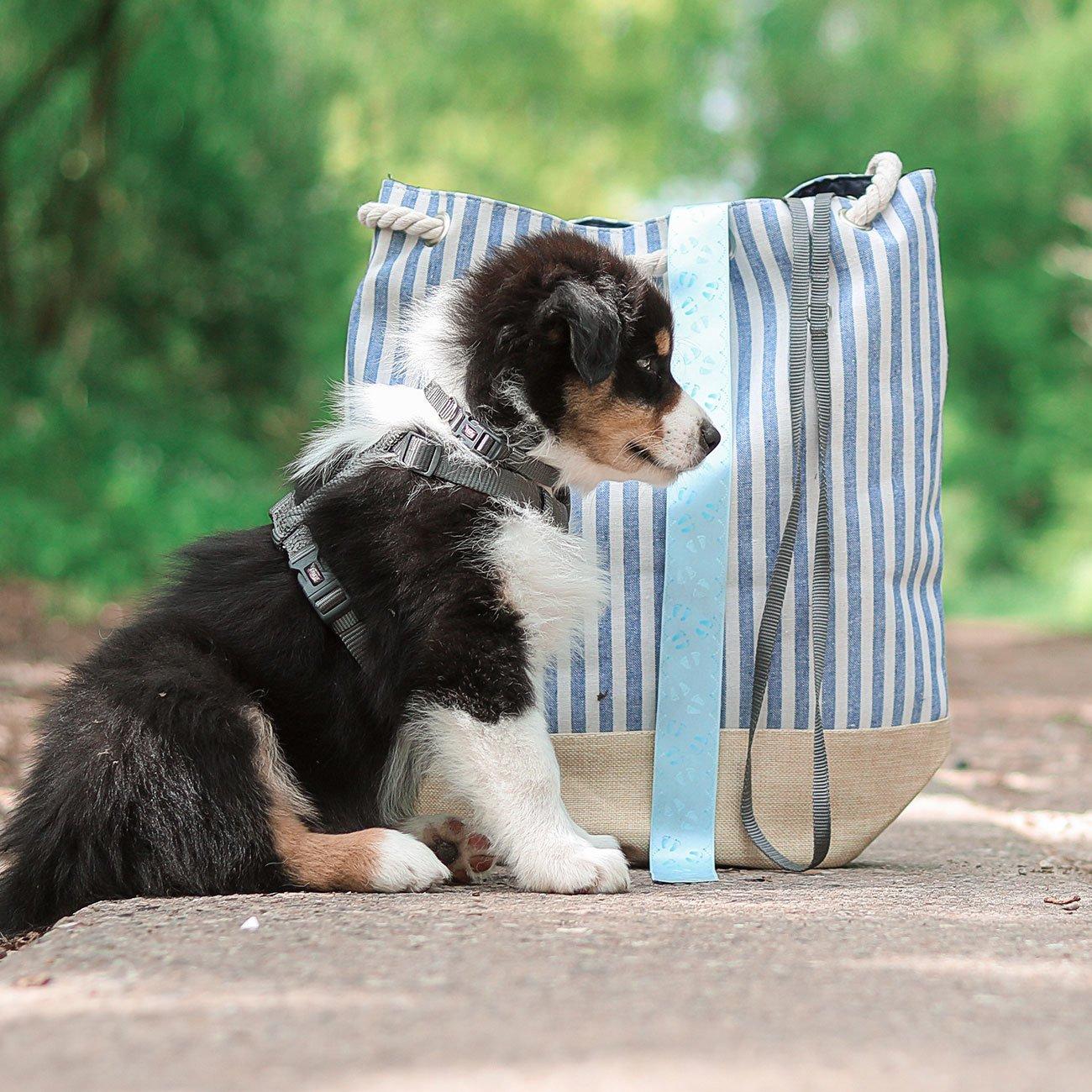 TRIXIE Premium Nylon Hundegeschirr 204801, Bild 8