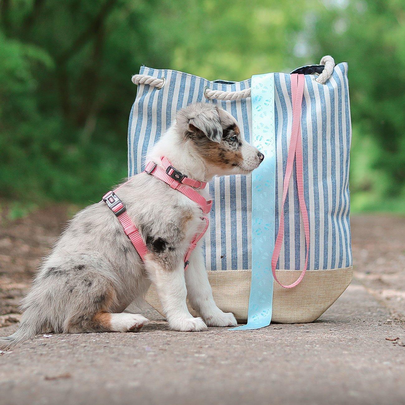 TRIXIE Premium Nylon Hundegeschirr 204801, Bild 4