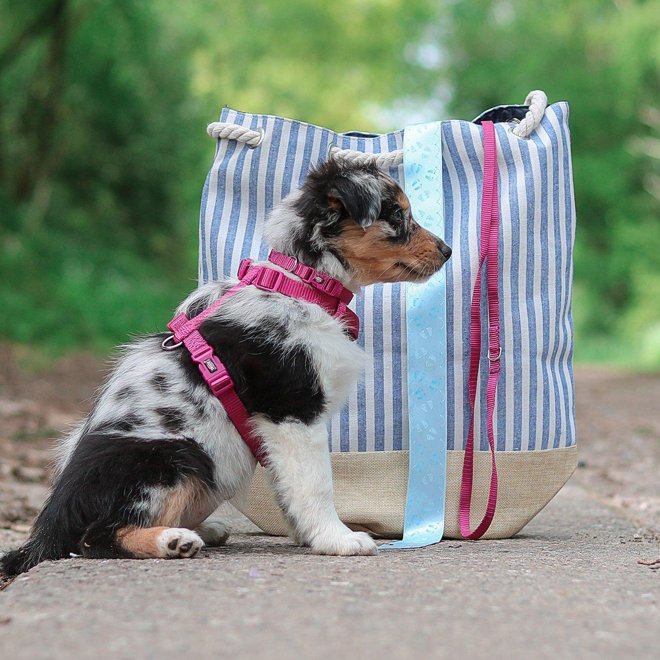 TRIXIE Premium Nylon Hundegeschirr 204801, Bild 6