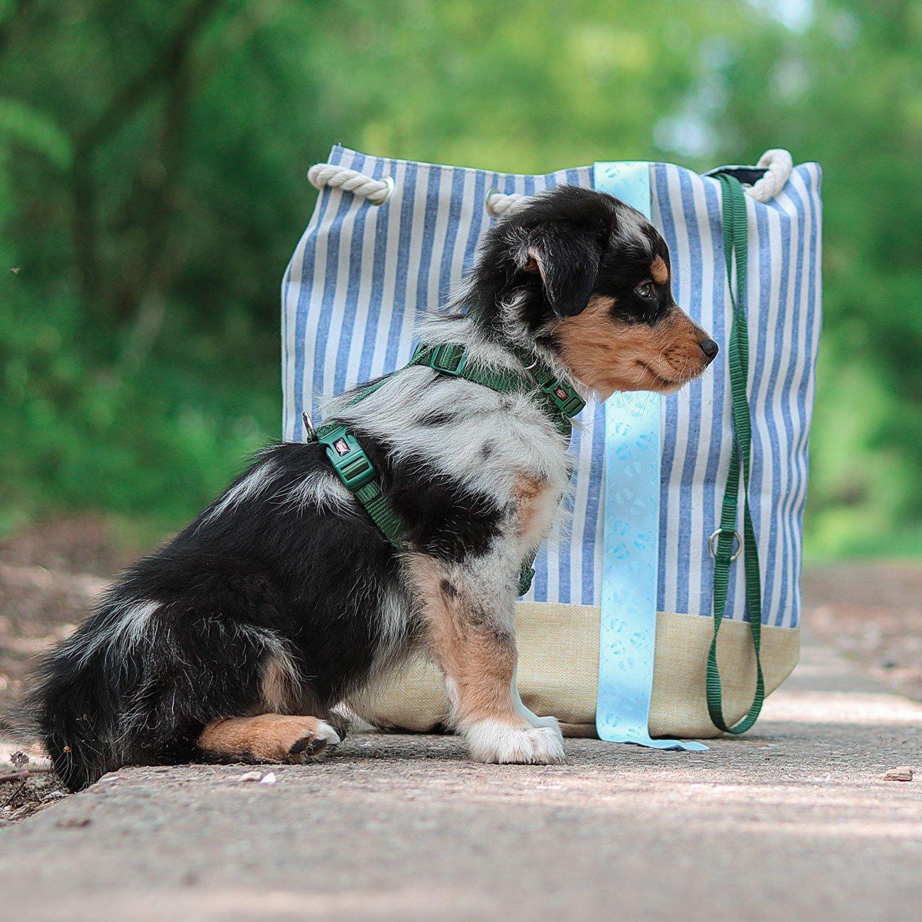 TRIXIE Premium Nylon Hundegeschirr 204801, Bild 16