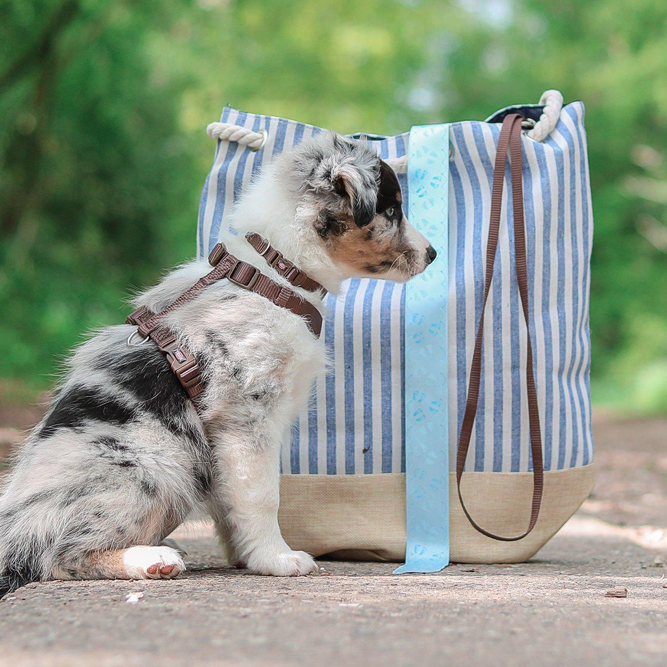 TRIXIE Premium Nylon Hundegeschirr 204801, Bild 10