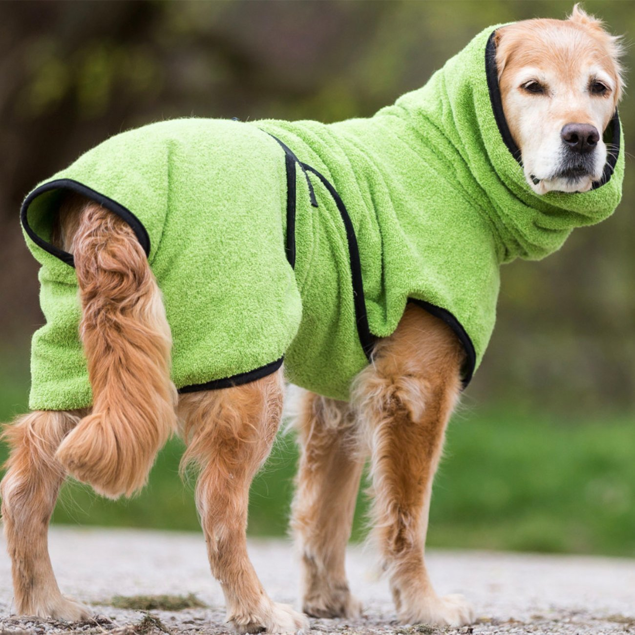 fit4dogs Trockenmantel Hund Dryup Cape, Bild 2