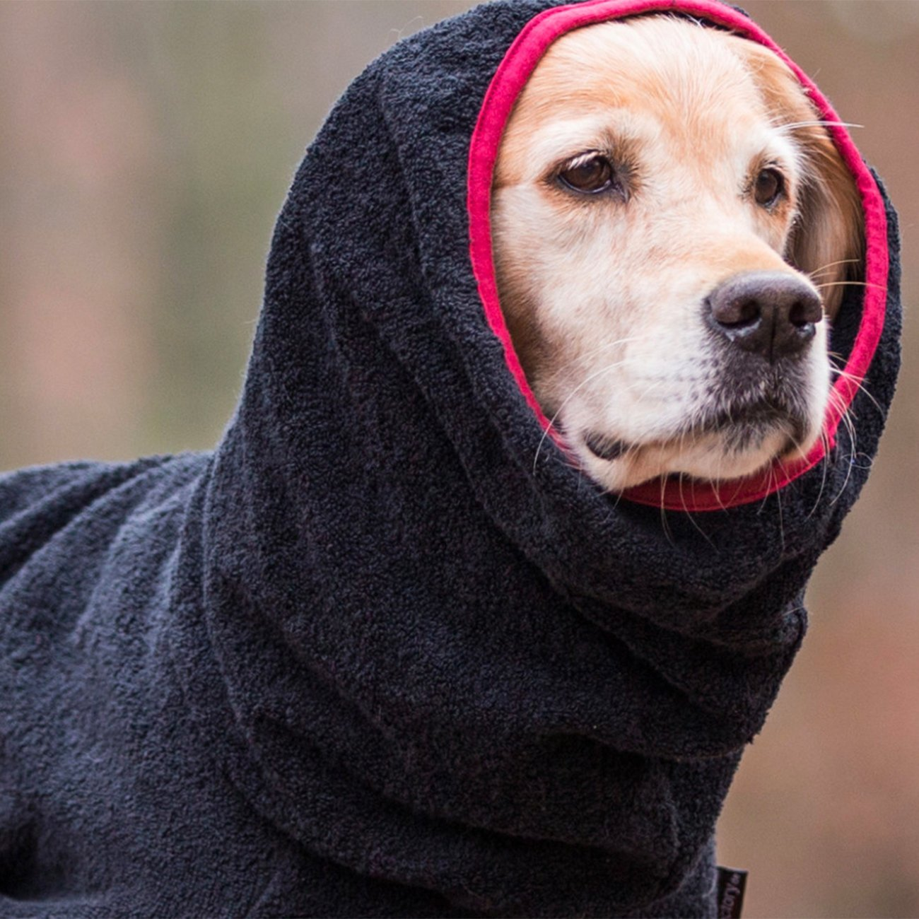 fit4dogs Trockenmantel Hund Dryup Cape, Bild 8