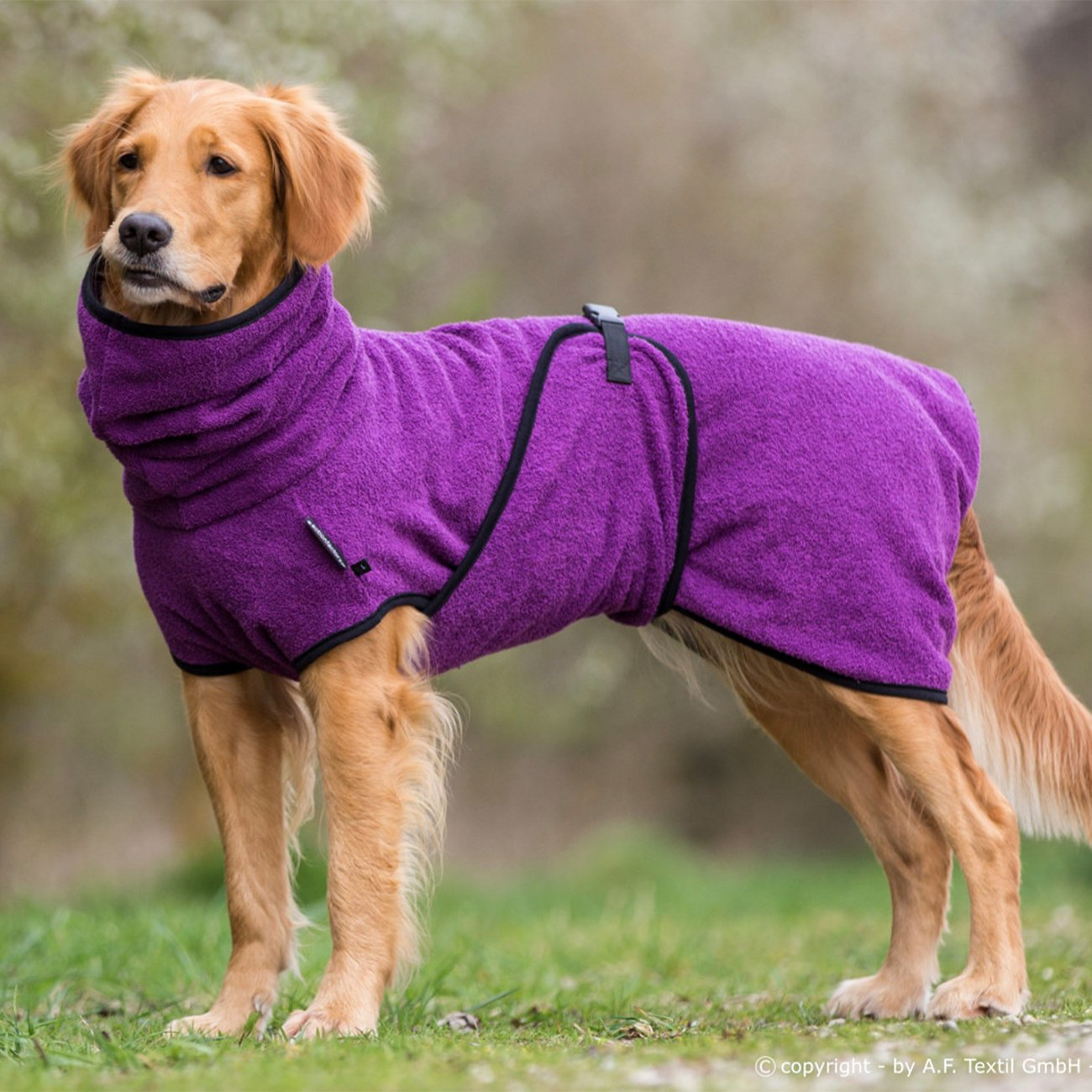 fit4dogs Trockenmantel Hund Dryup Cape, Bild 3