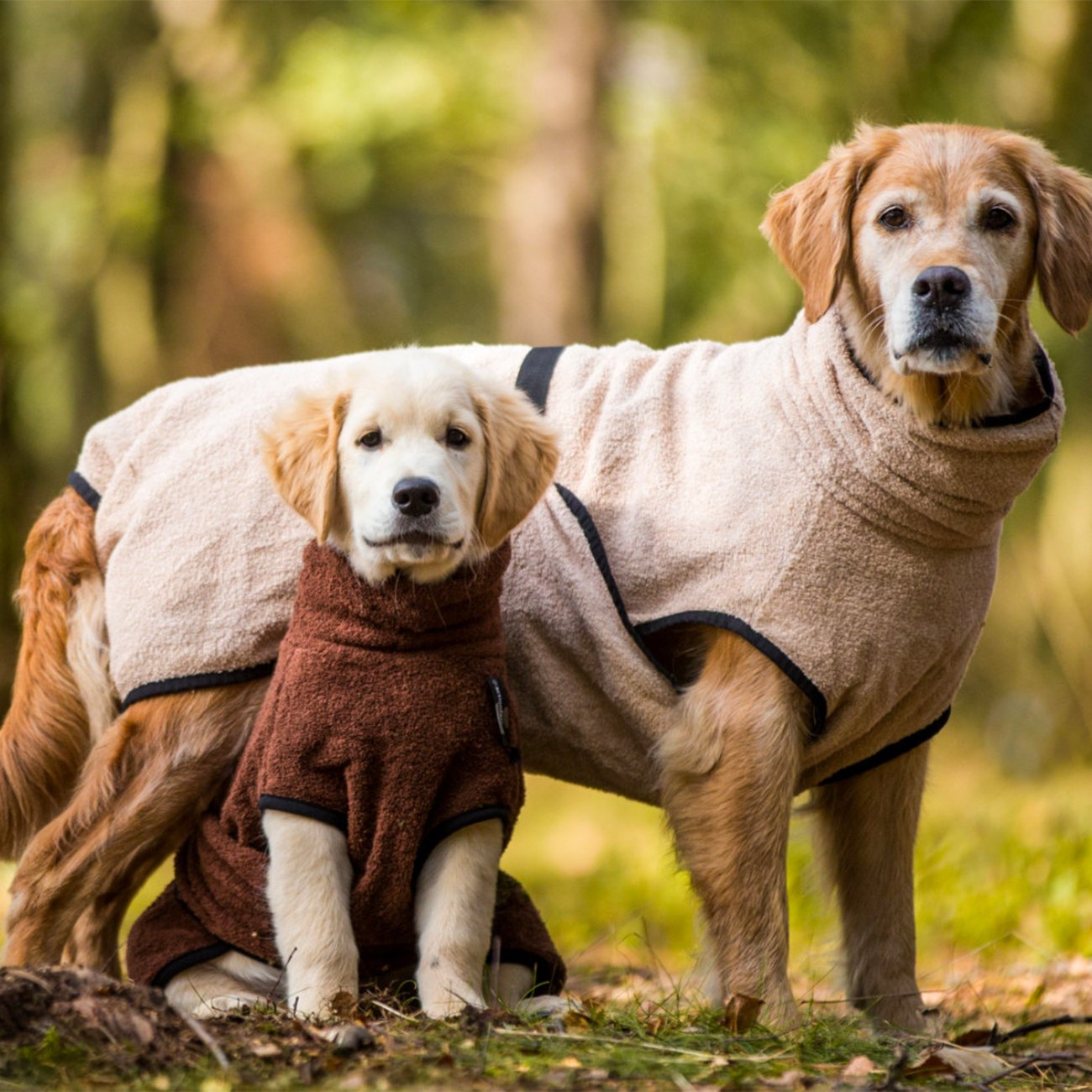 ActionFactory Trockenmantel Hund fit4dogs Dryup Cape, Bild 18