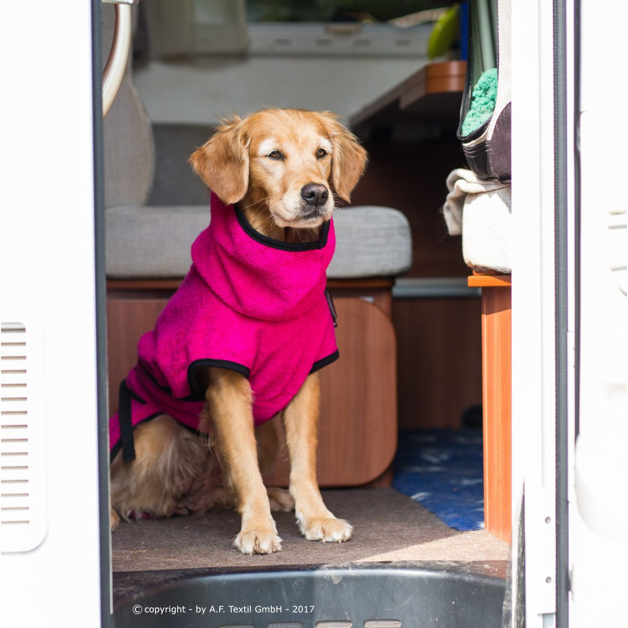 fit4dogs Trockenmantel Hund Dryup Cape, Bild 24