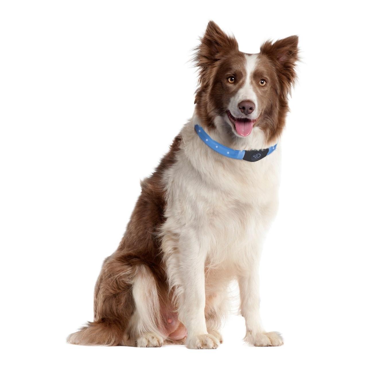 Karlie Visio Light Leuchthalsband LED für Hunde mit Langhaar, Bild 3
