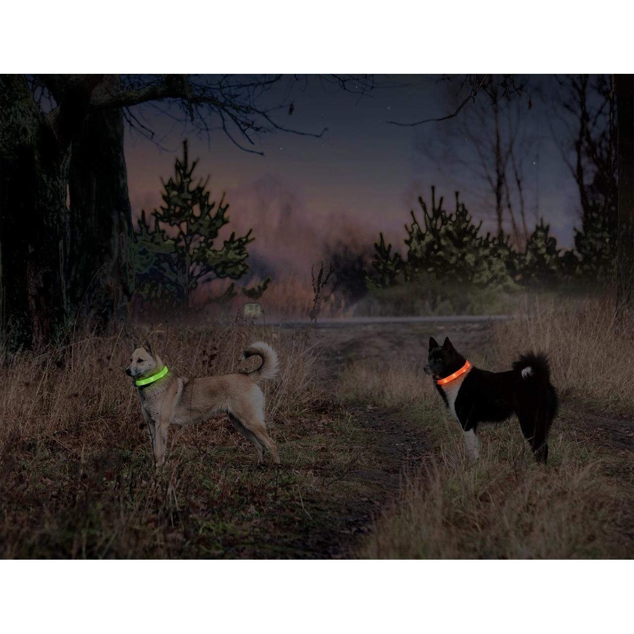 Karlie Visio Light Leuchthalsband LED für Hunde mit Langhaar, Bild 11