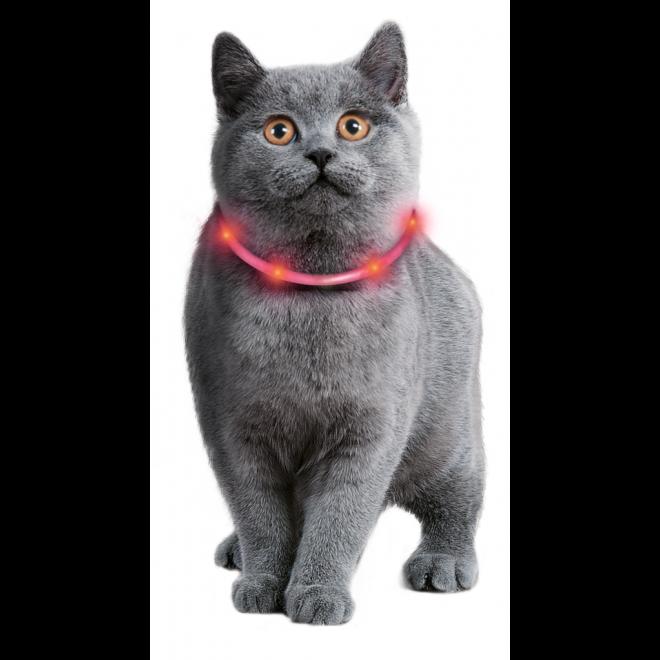 Karlie Visio Light Leuchthalsband für Katzen und kleine Hunde, Bild 2