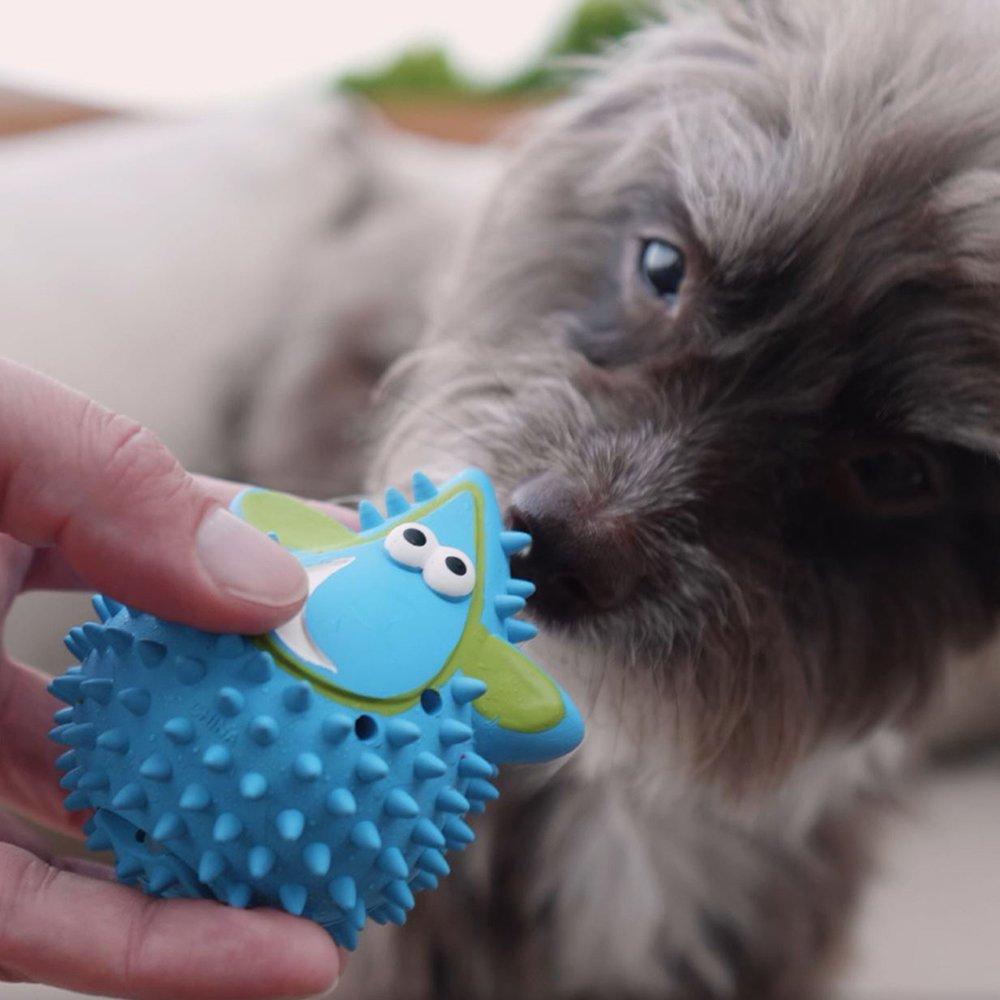 Nobby Vollgummi Kühl-Tropfen Hundespielzeug zum Einfrieren, Bild 3