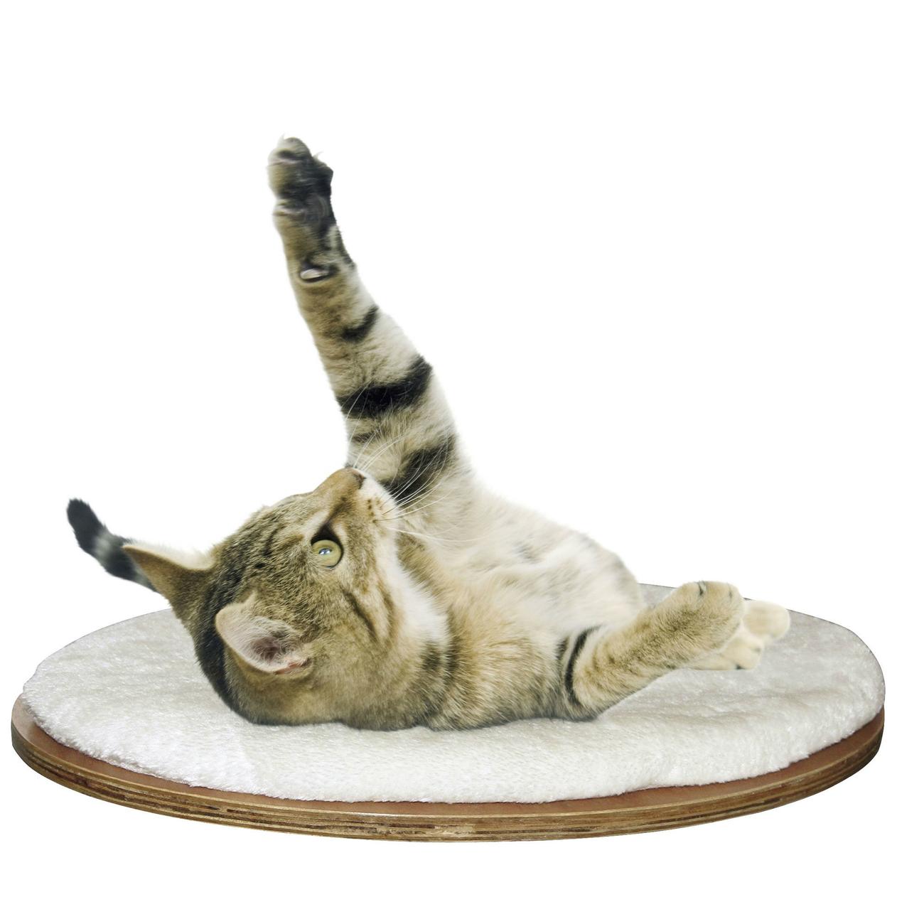 Kerbl Wandliegebrett Dolomit für Katzen, 50 x 35 x 1,5 cm