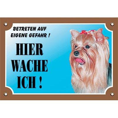 Nobby Warntafel Hund, Yorkshire Terrier