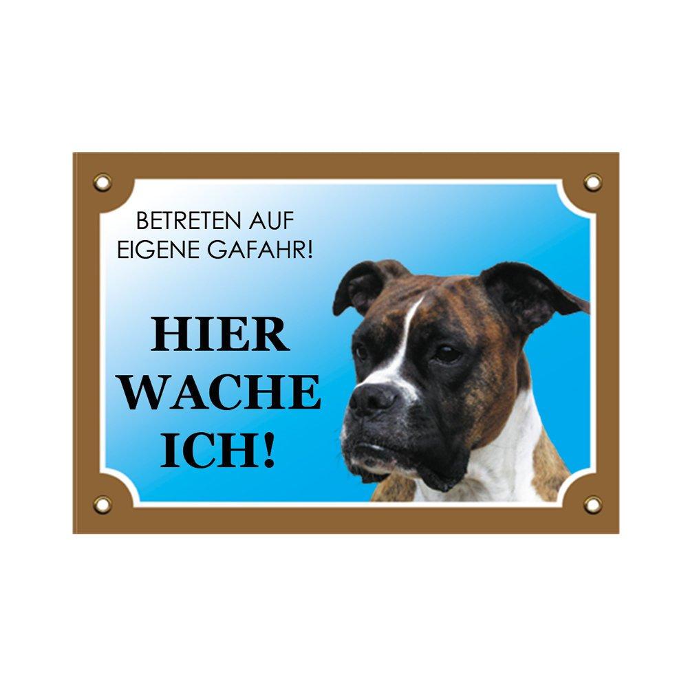 Nobby Warntafel Hund, Boxer