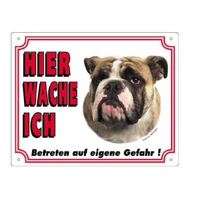 Nobby Warntafel weiß Hund, Bulldogge