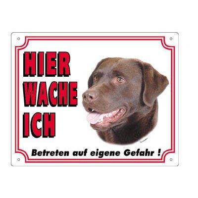 Nobby Warntafel weiß Hund, Labrador braun