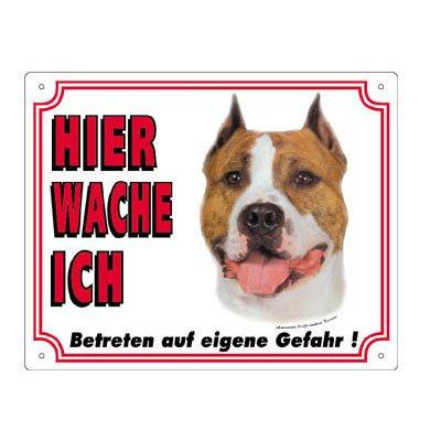 Nobby Warntafel weiß Hund, American Staffordshire