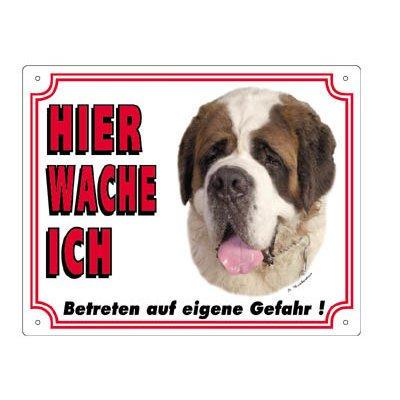 Nobby Warntafel weiß Hund, Bernhardiner