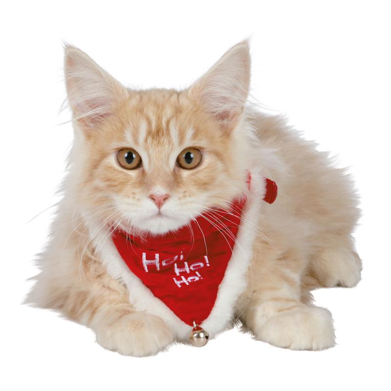 Trixie Weihnachts-Halsband mit Halstuch für Hunde und Katzen 92330, Bild 3