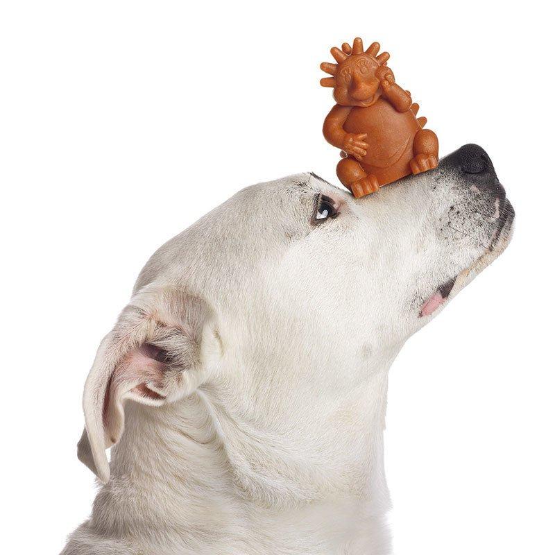 Whimzees Hundesnack Hedgehog Igel Herman, Bild 3