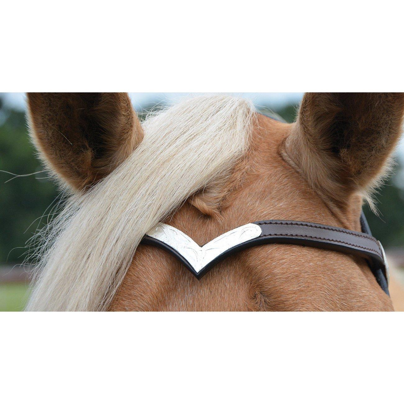 WILDHORN Kopfstück Colt Silver mit Zügeln, Bild 3