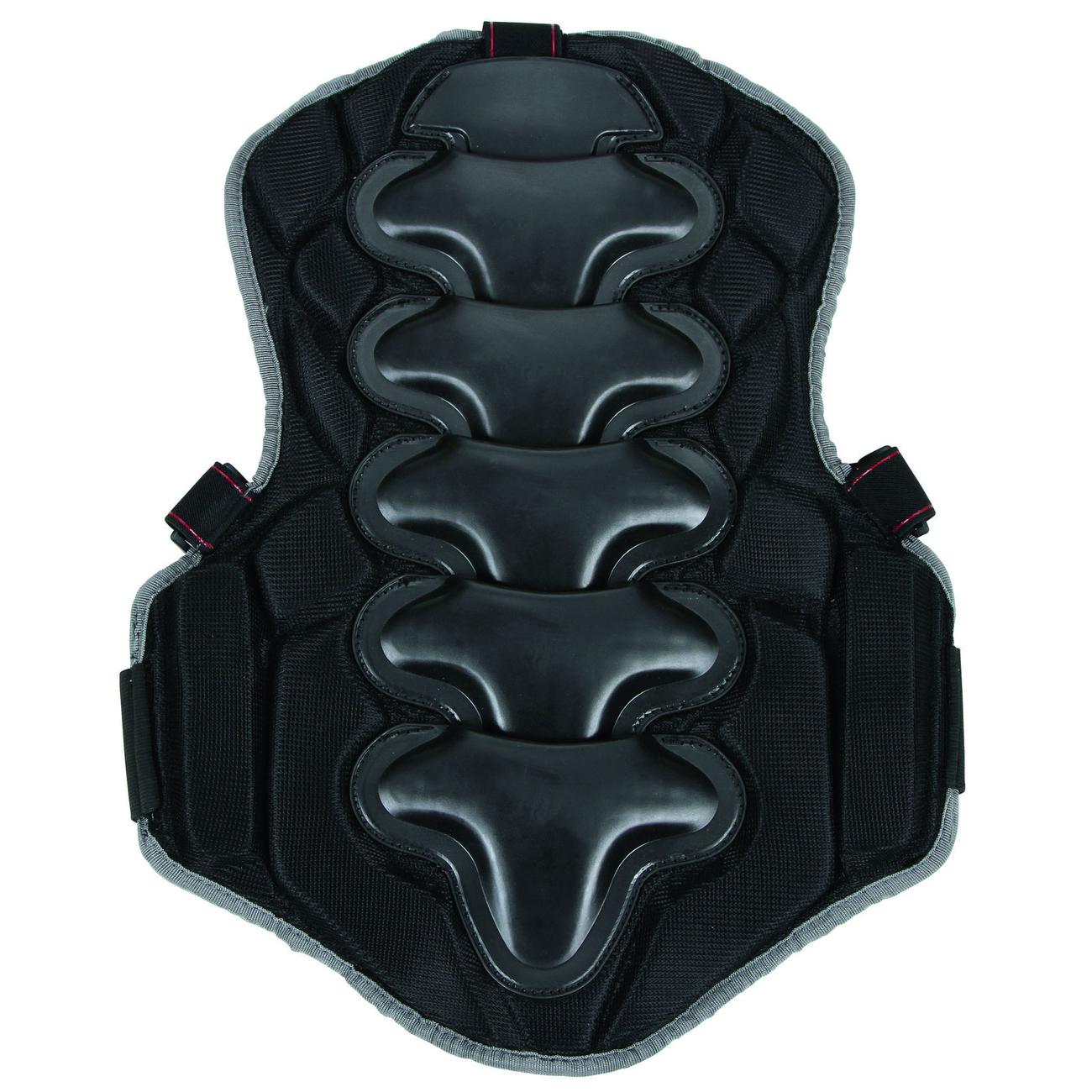 Kerbl Wirbelsäulenschutz Rückenschutz Reiten BackPro