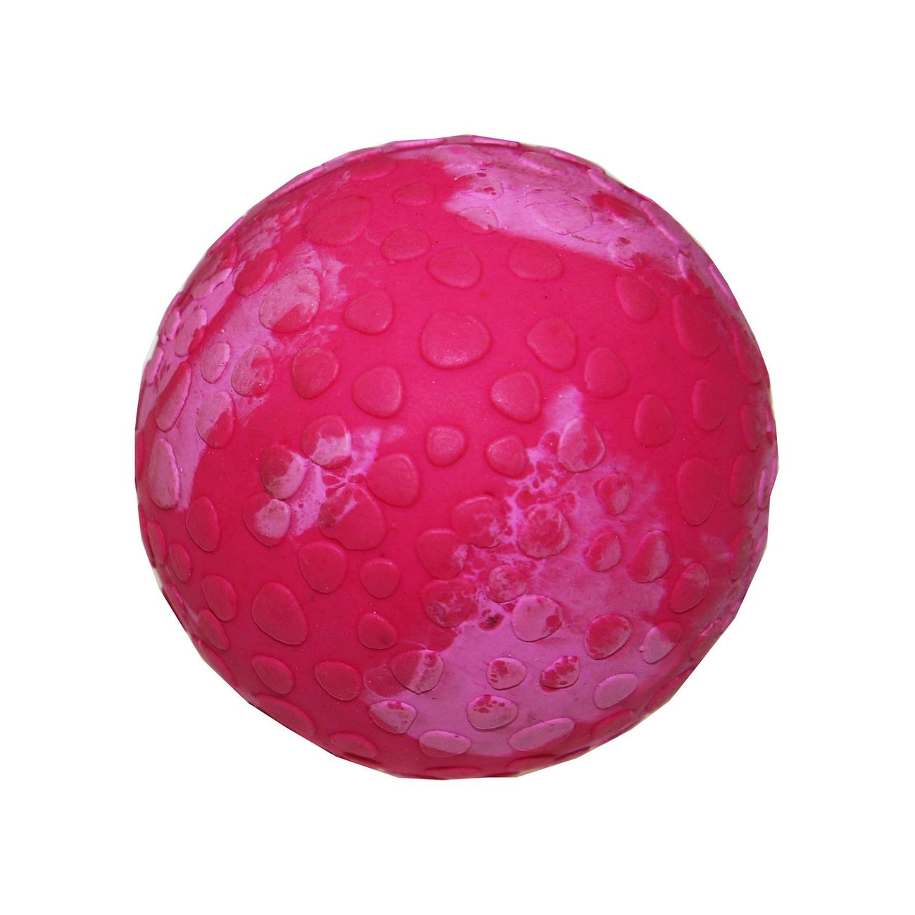 Wolters Aqua-Fun Wasserball Hundespielzeug, Bild 5