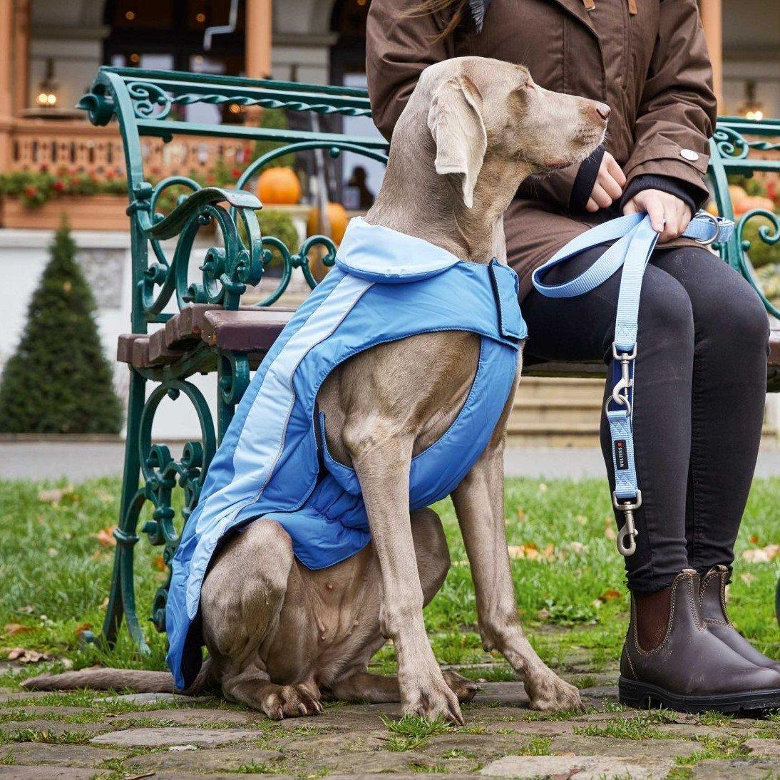 Wolters Dogzwear Skijacke Winterjacke für Hunde, Bild 10