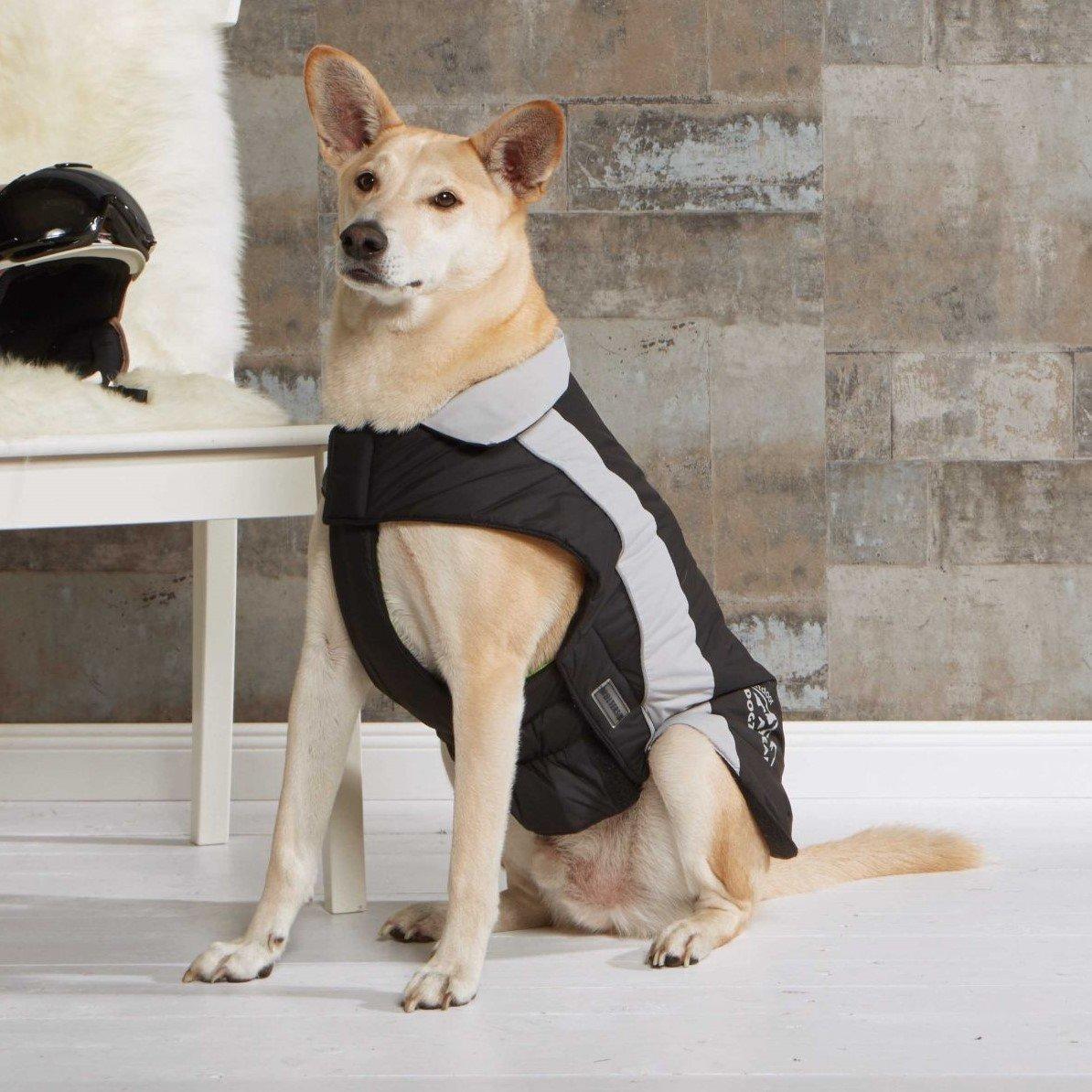 Wolters Dogzwear Skijacke Winterjacke für Hunde, Bild 3