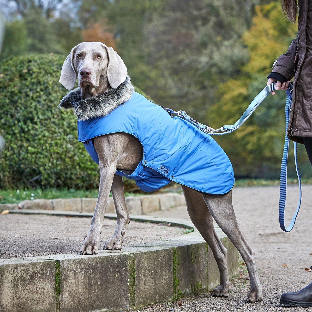 Wolters Hundeparka mit Fellkragen, Bild 2