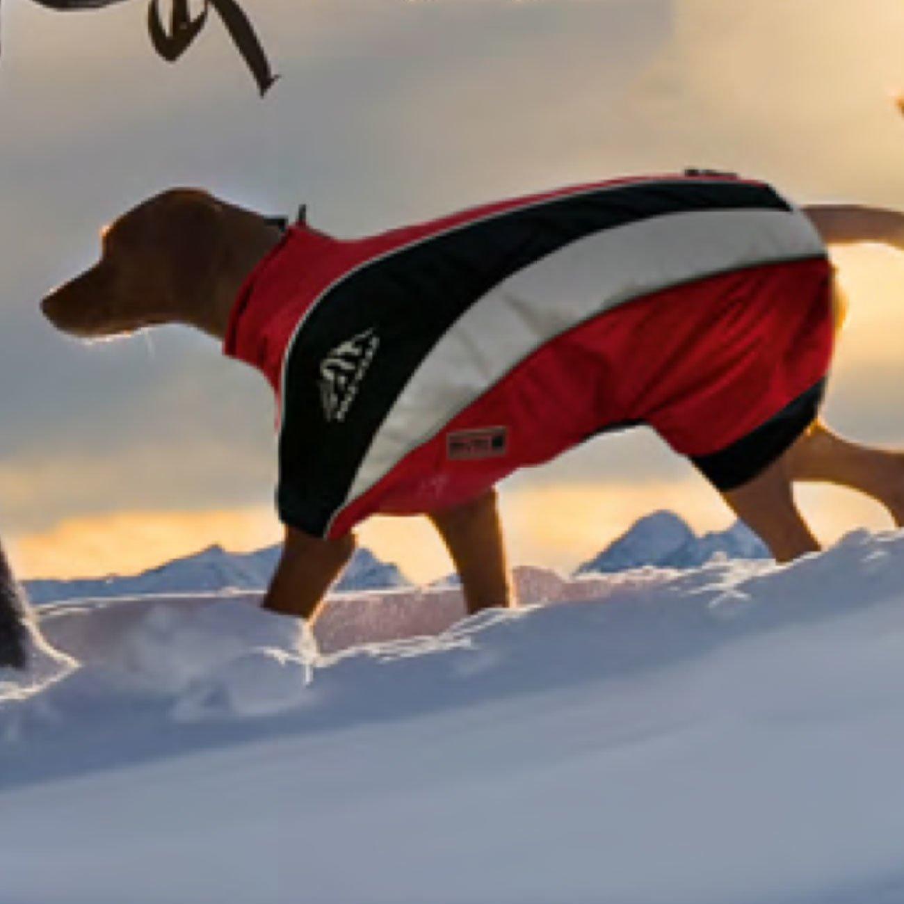 Wolters Hundewintermantel Skianzug Dogz Wear, Bild 5