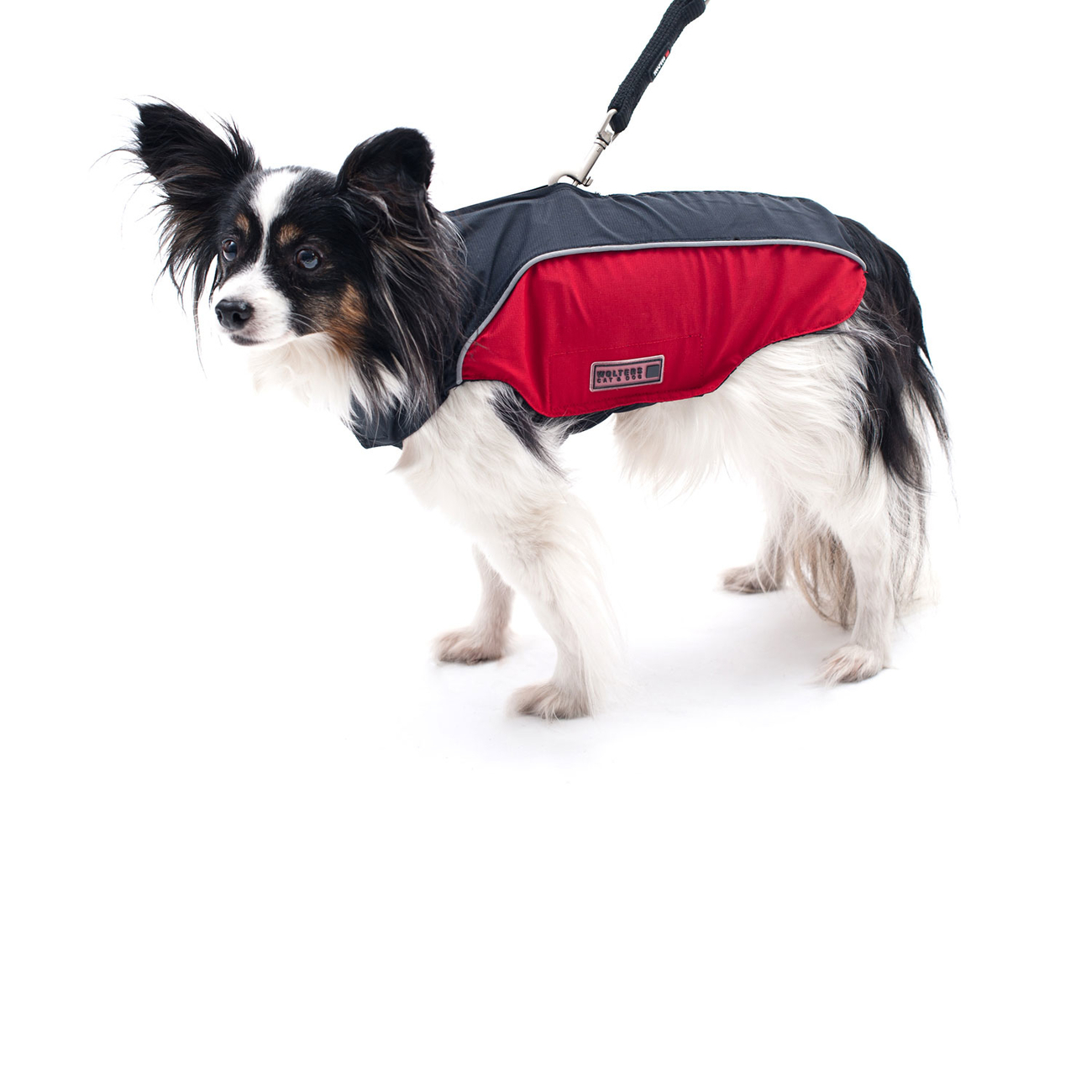 Wolters Regenjacke für Hunde Easy Rain, Bild 9