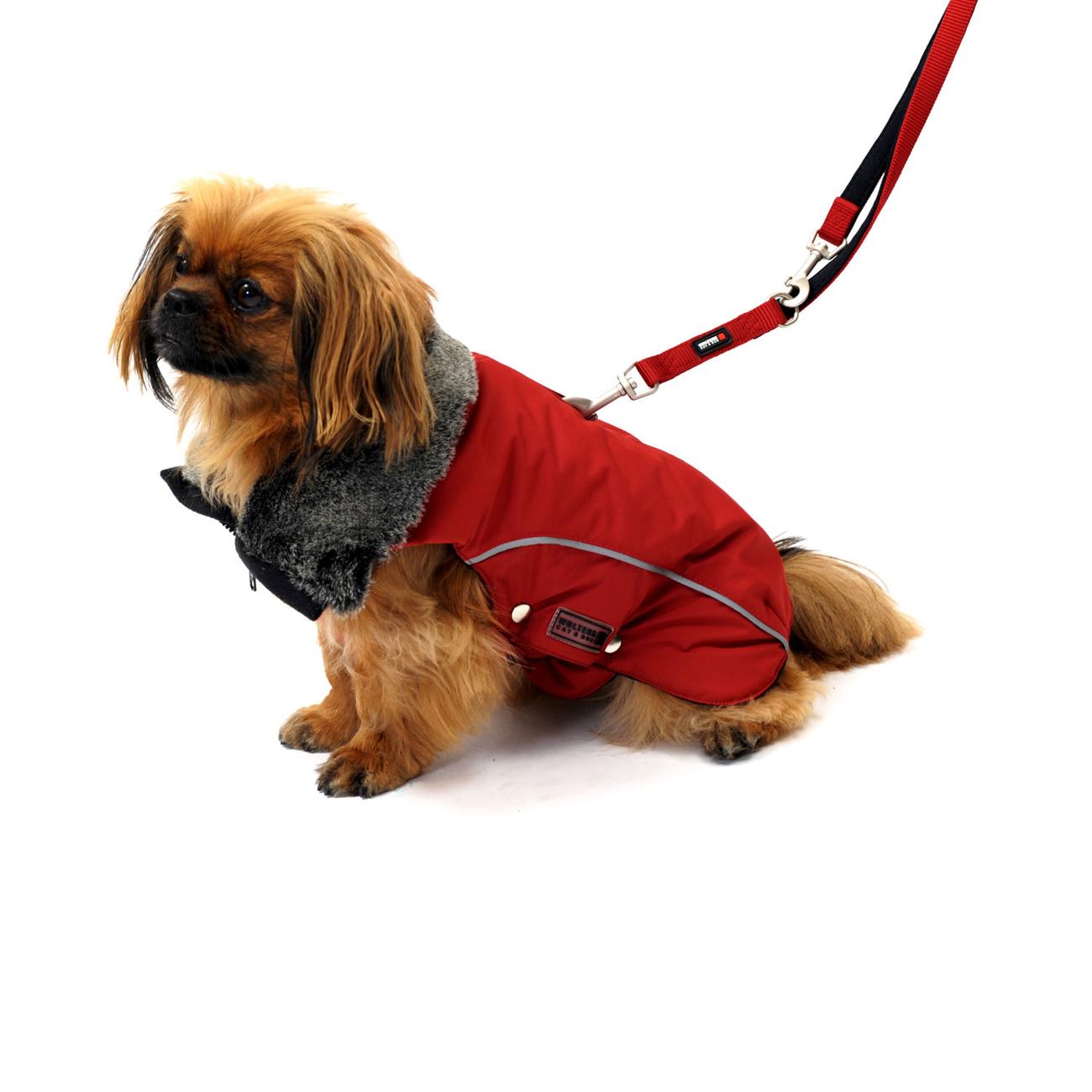 Wolters Winterjacke für Hunde Amundsen, Bild 3