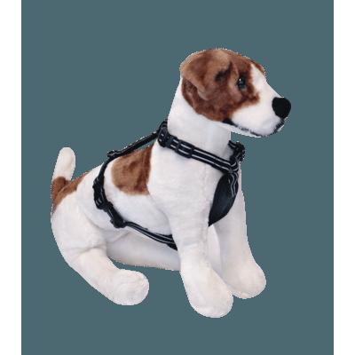 Alcott Essentials Abenteuergeschirr für Hunde