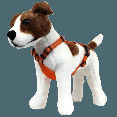 Alcott Neon Abenteuergeschirr für Hunde