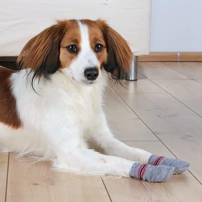 TRIXIE Anti Rutsch Hundesocken aus Baumwolle Preview Image