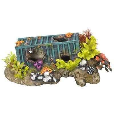Aqua Ornaments Container mit Korallen und Pflanzen