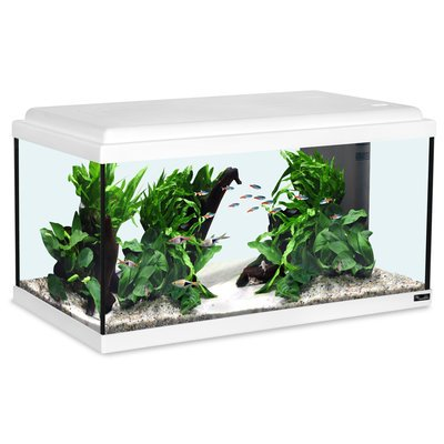 Aquatlantis Advance 60 LED Aquarium Preview Image