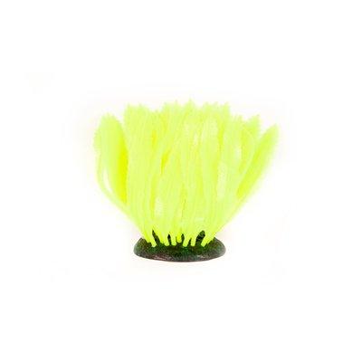 Aquatlantis Aqua Glow Farn